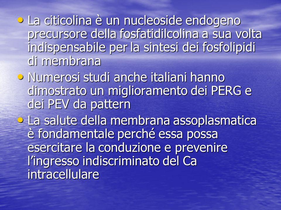 La citicolina è un nucleoside endogeno precursore della fosfatidilcolina a sua volta indispensabile per la sintesi dei fosfolipidi di membrana