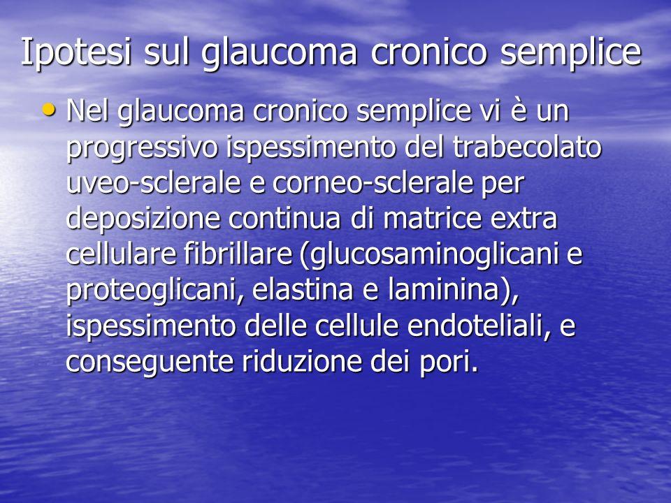 Ipotesi sul glaucoma cronico semplice