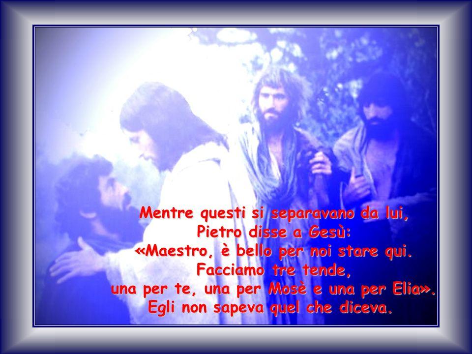 Mentre questi si separavano da lui, Pietro disse a Gesù:
