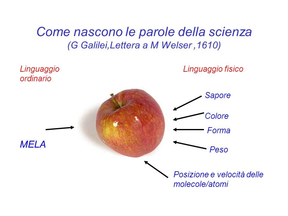 Come nascono le parole della scienza (G Galilei,Lettera a M Welser ,1610)