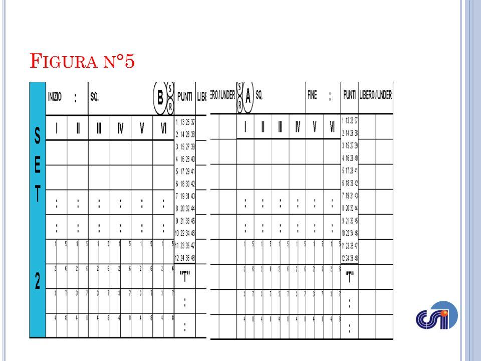 Figura n°5