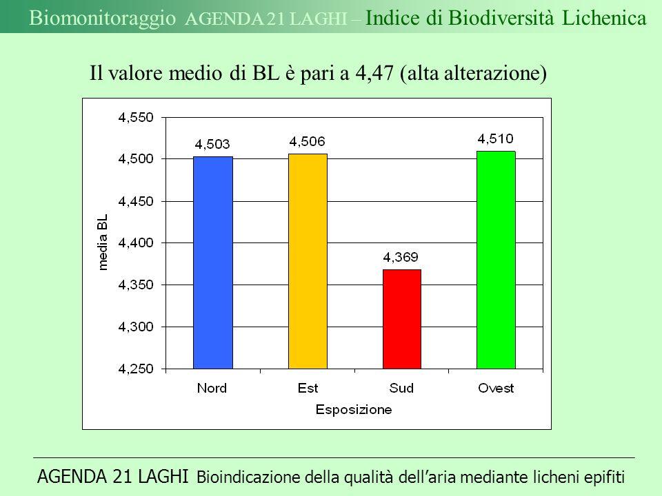 Biomonitoraggio AGENDA 21 LAGHI – Indice di Biodiversità Lichenica