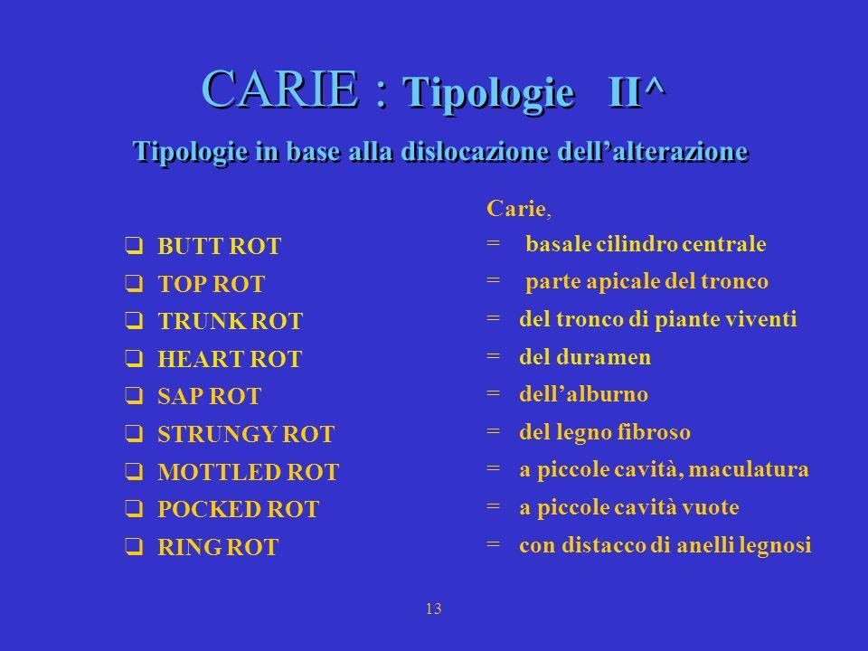 CARIE : Tipologie II^ Tipologie in base alla dislocazione dell'alterazione