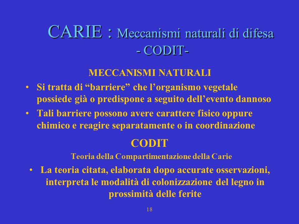 CARIE : Meccanismi naturali di difesa - CODIT-