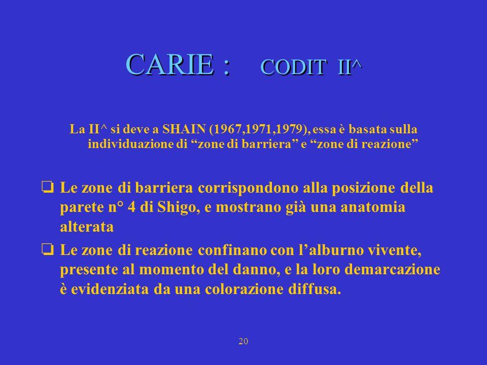 CARIE : CODIT II^ La II^ si deve a SHAIN (1967,1971,1979), essa è basata sulla individuazione di zone di barriera e zone di reazione
