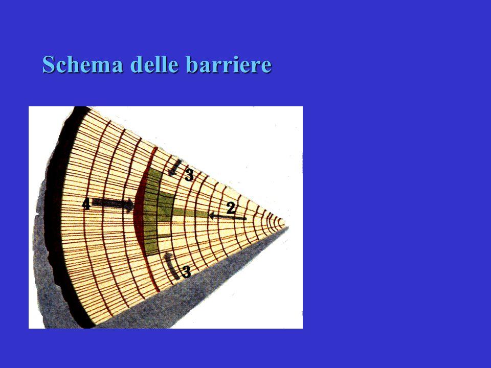 Schema delle barriere