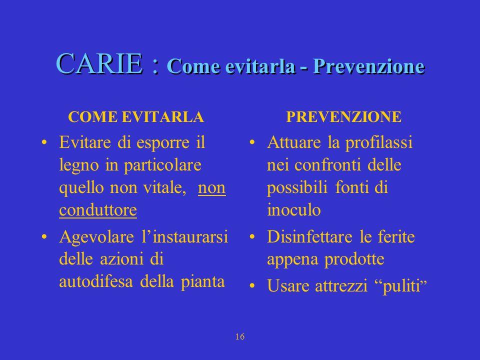 CARIE : Come evitarla - Prevenzione