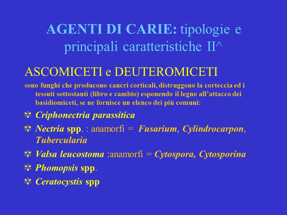 AGENTI DI CARIE: tipologie e principali caratteristiche II^