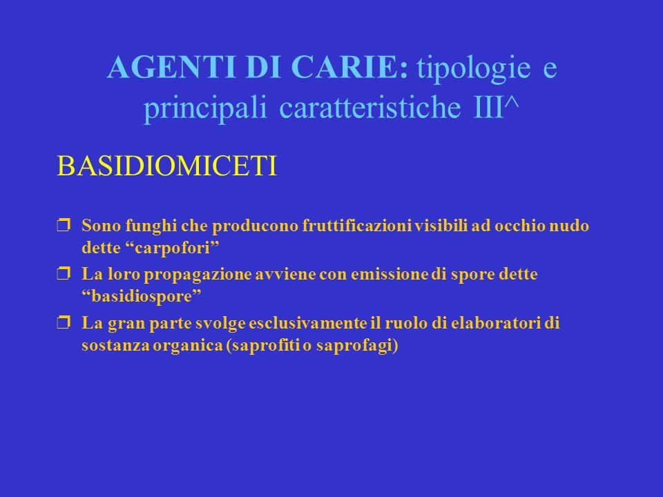 AGENTI DI CARIE: tipologie e principali caratteristiche III^