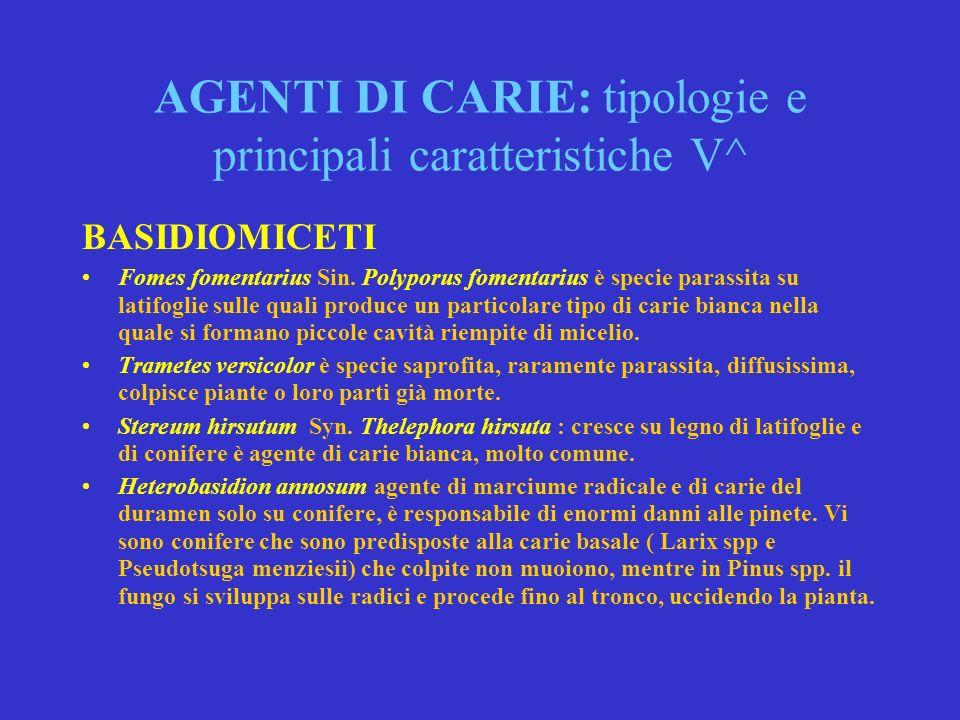 AGENTI DI CARIE: tipologie e principali caratteristiche V^