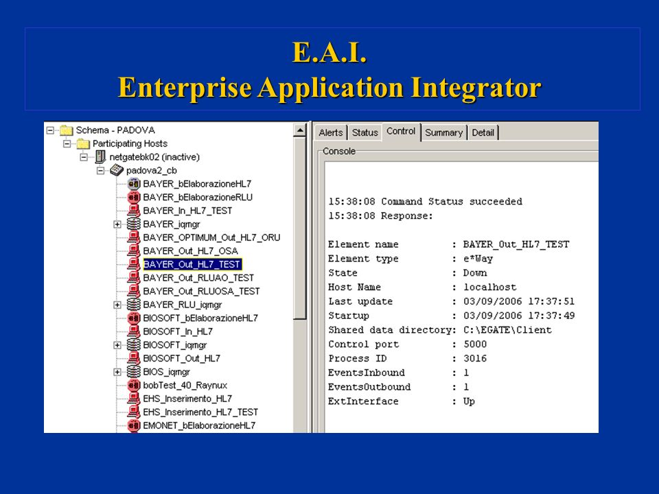 Enterprise Application Integrator