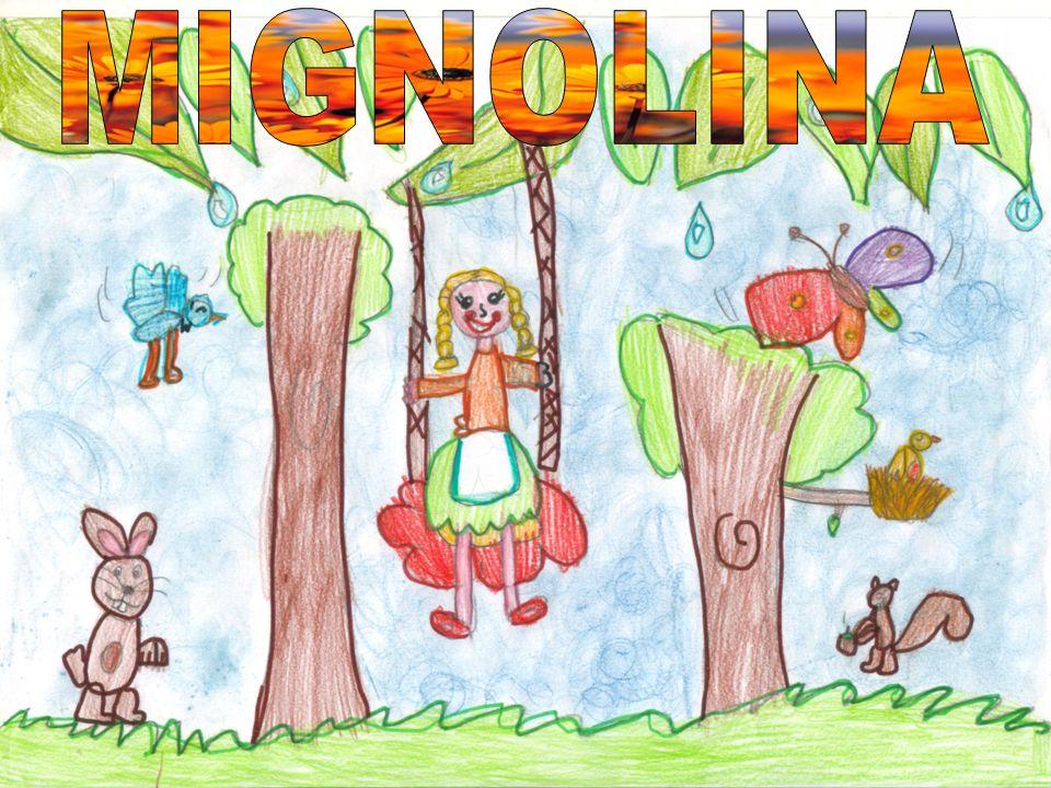 MIGNOLINA