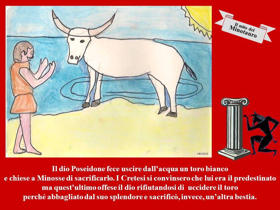 Il dio Poseidone fece uscire dall acqua un toro bianco