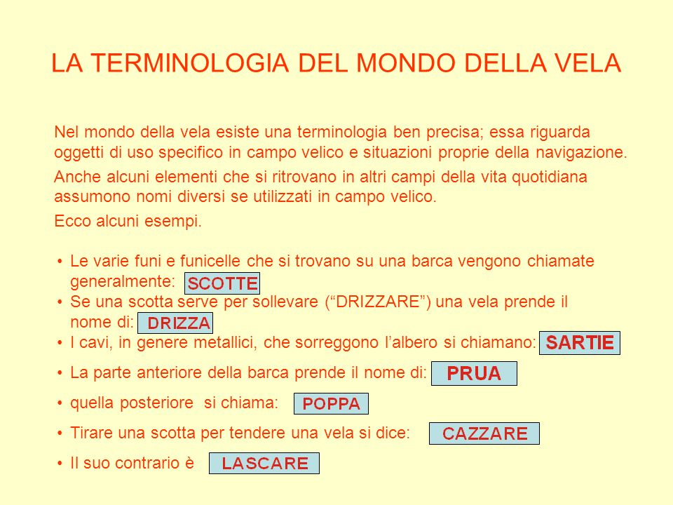 LA TERMINOLOGIA DEL MONDO DELLA VELA
