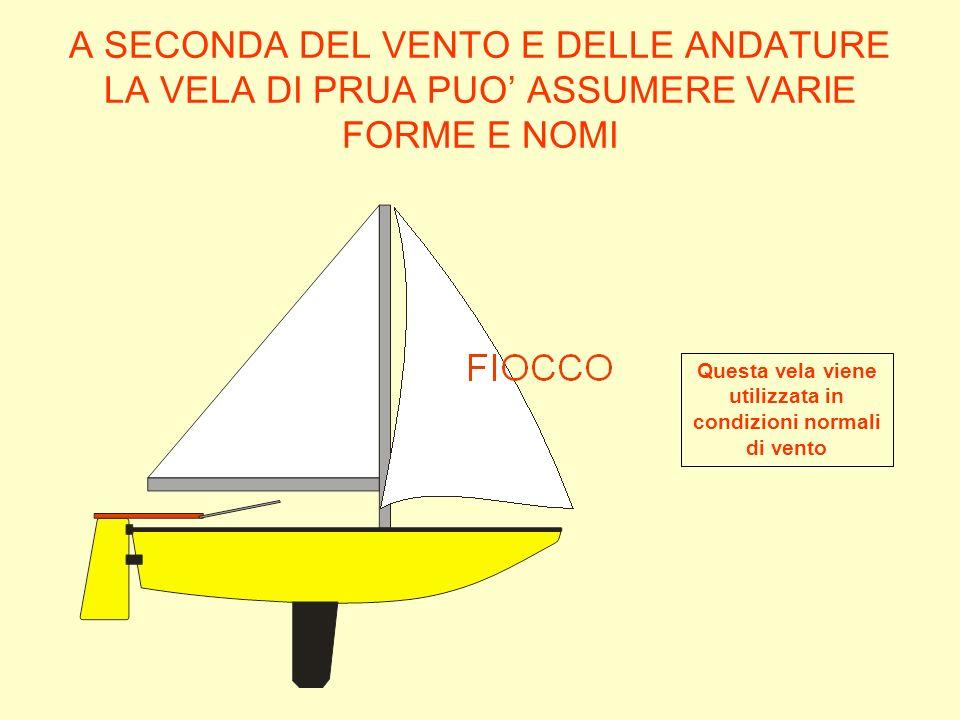 Questa vela viene utilizzata in condizioni normali di vento