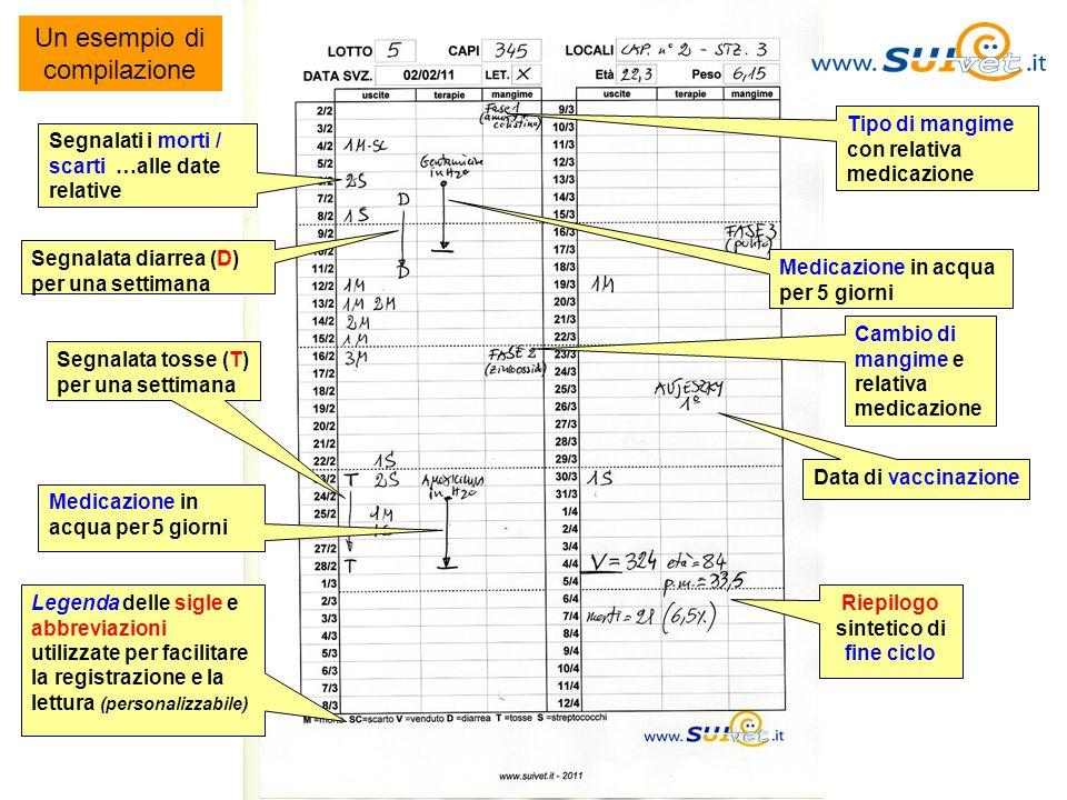 Riepilogo sintetico di fine ciclo
