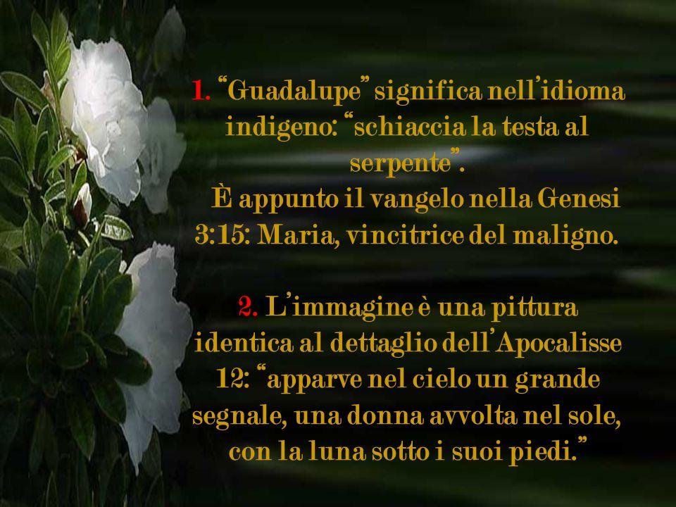 È appunto il vangelo nella Genesi 3:15: Maria, vincitrice del maligno.