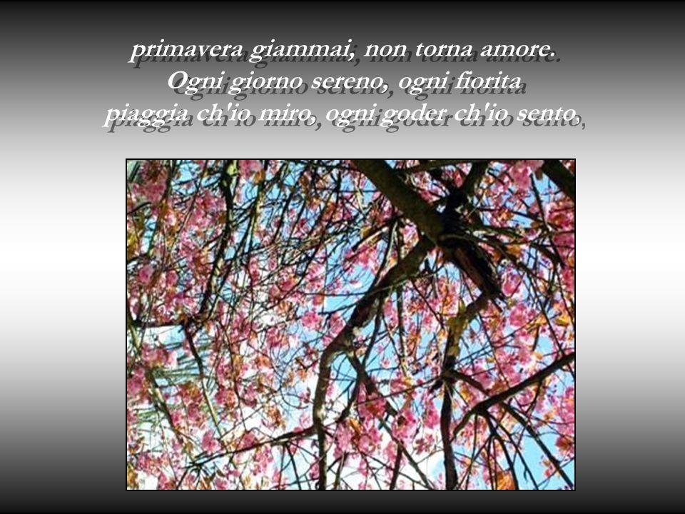primavera giammai, non torna amore