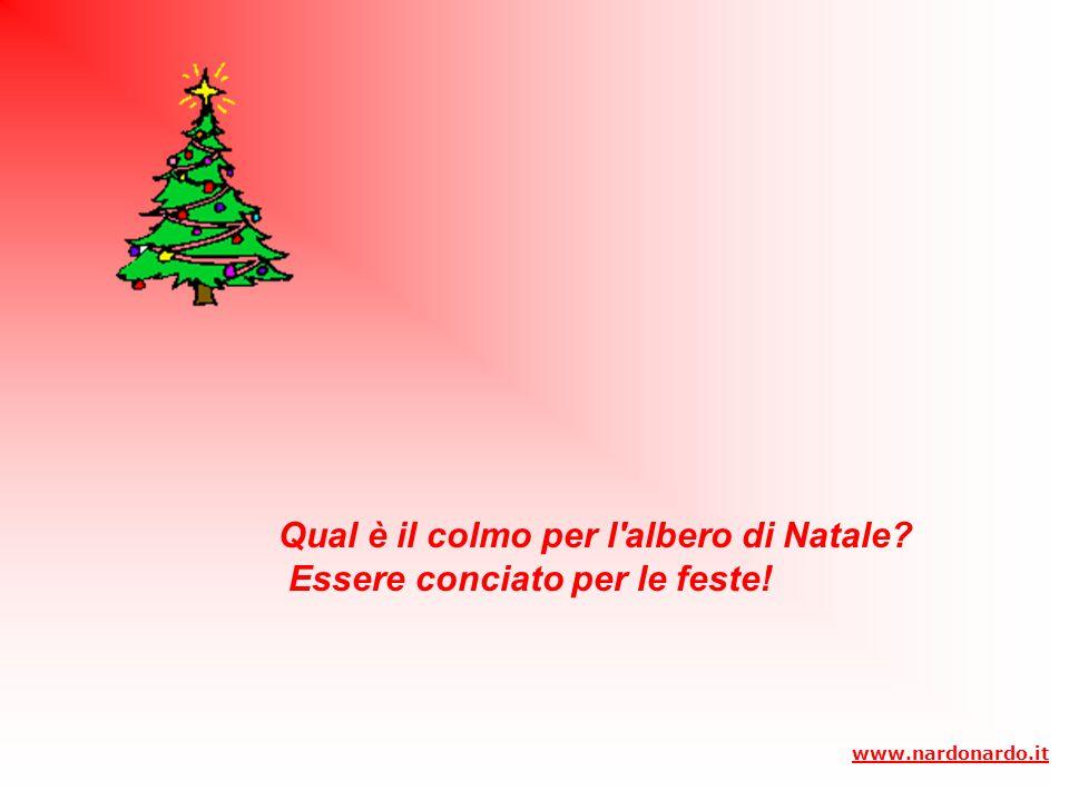 Qual è il colmo per l albero di Natale Essere conciato per le feste!