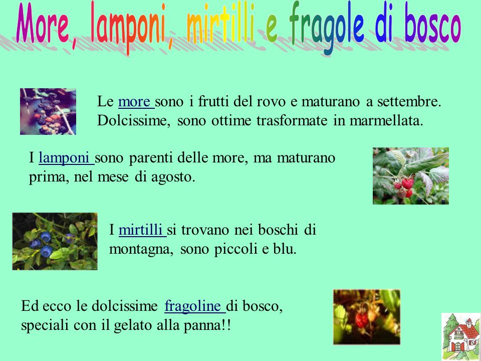 More, lamponi, mirtilli e fragole di bosco