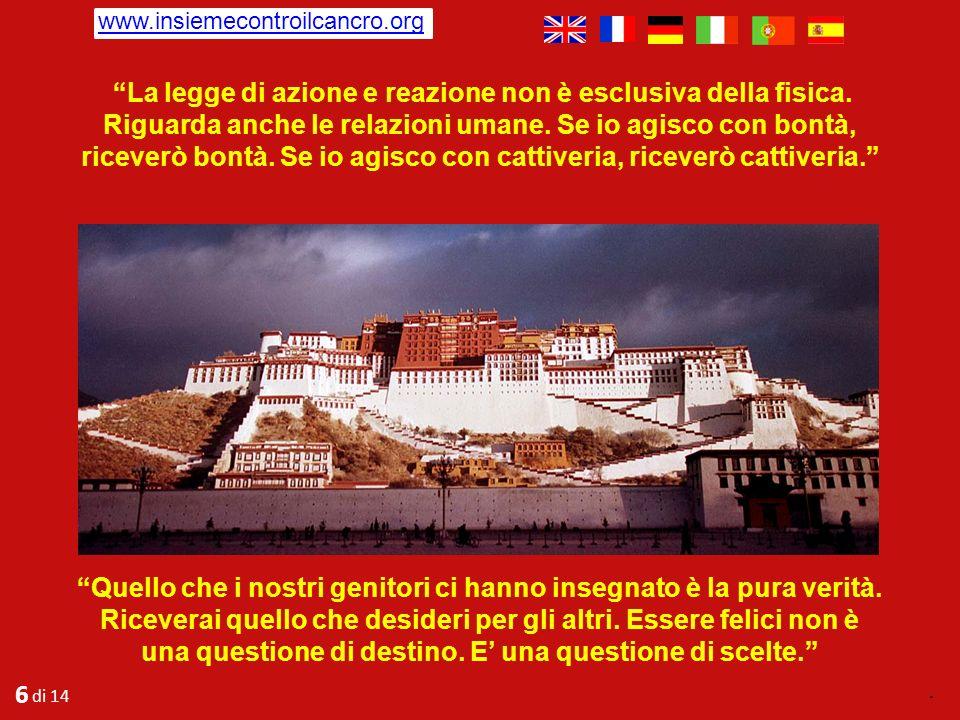 www.insiemecontroilcancro.org