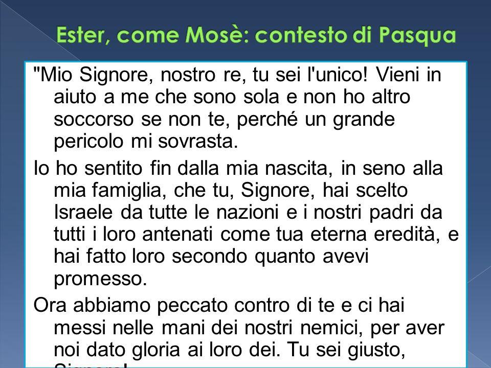 Ester, come Mosè: contesto di Pasqua