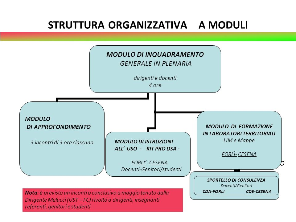 STRUTTURA ORGANIZZATIVA A MODULI
