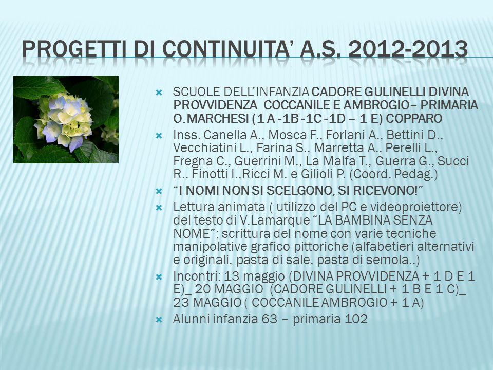Progetti di continuita' a.s. 2012-2013
