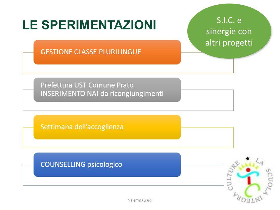 S.I.C. e sinergie con altri progetti