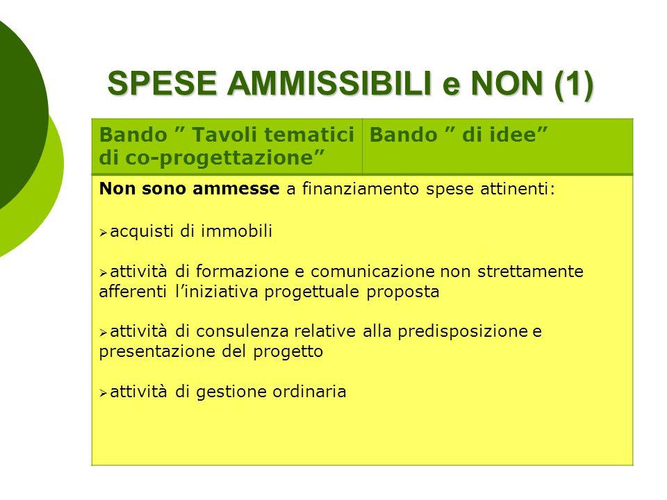 SPESE AMMISSIBILI e NON (1)