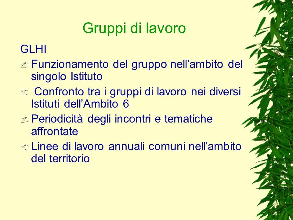 Gruppi di lavoro GLHI. Funzionamento del gruppo nell'ambito del singolo Istituto.