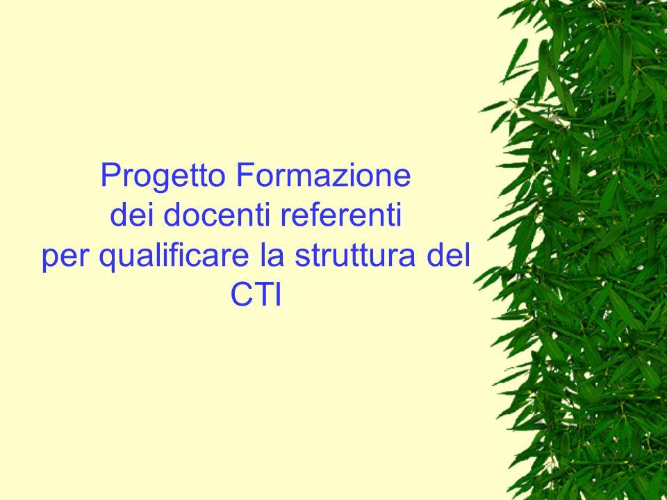 Progetto Formazione dei docenti referenti per qualificare la struttura del CTI