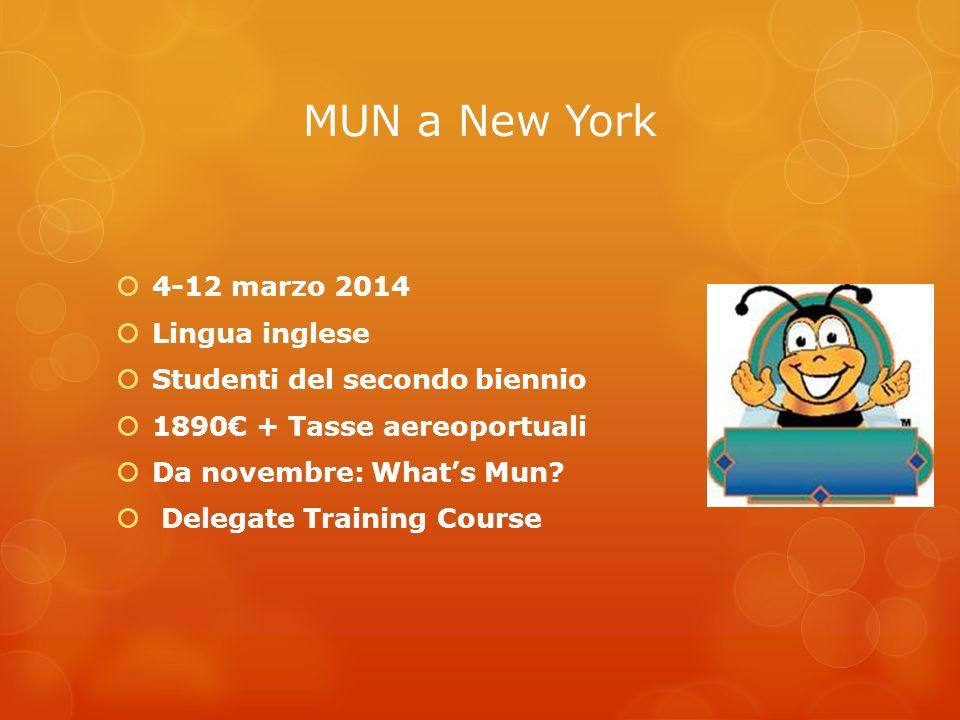 MUN a New York 4-12 marzo 2014 Lingua inglese
