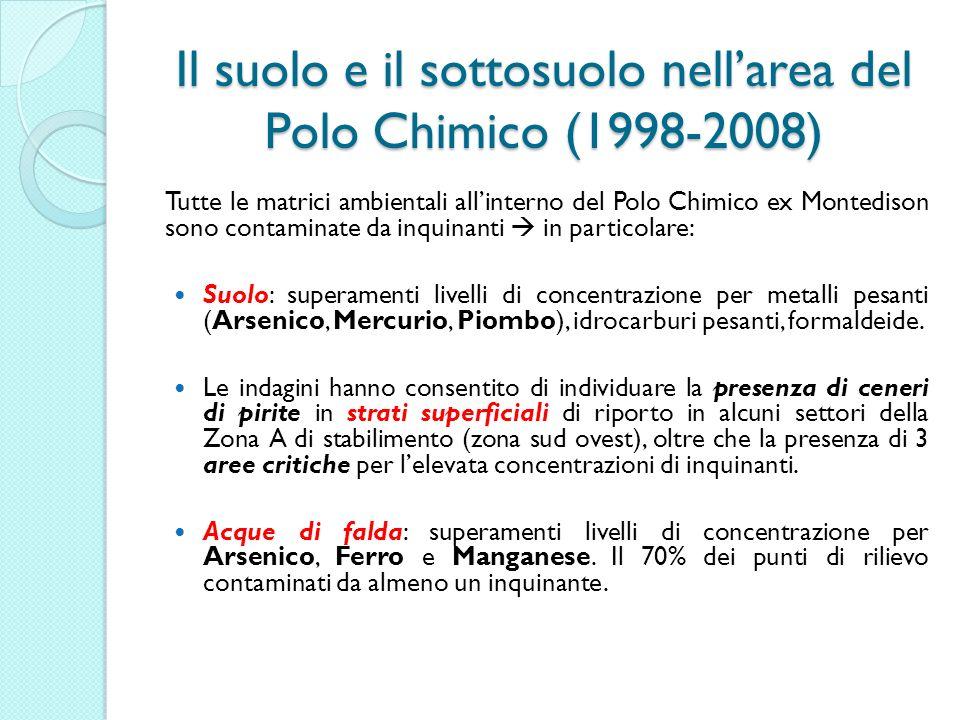 Il suolo e il sottosuolo nell'area del Polo Chimico (1998-2008)