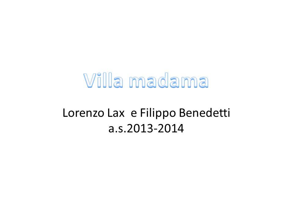 Lorenzo Lax e Filippo Benedetti a.s.2013-2014