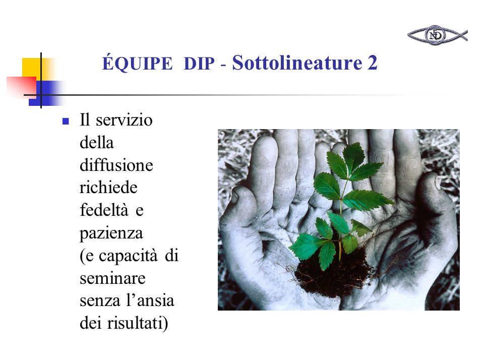 ÉQUIPE DIP - Sottolineature 2