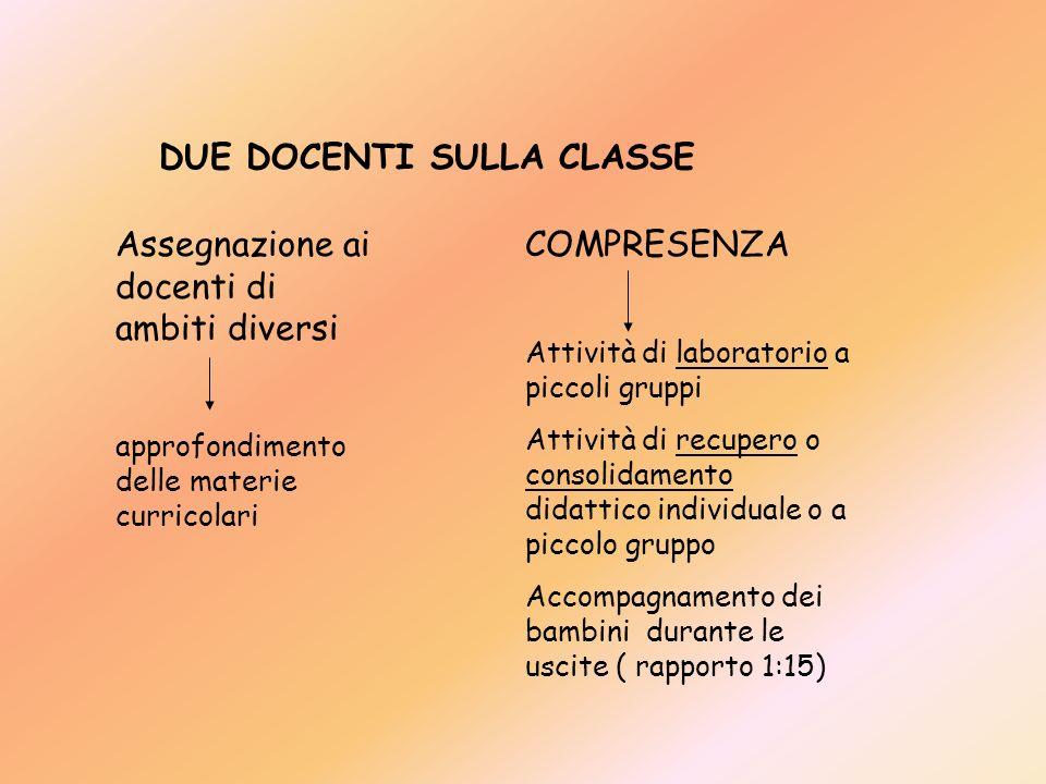 DUE DOCENTI SULLA CLASSE