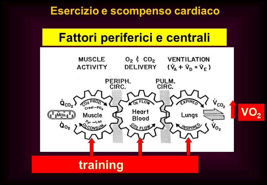 Esercizio e scompenso cardiaco Fattori periferici e centrali