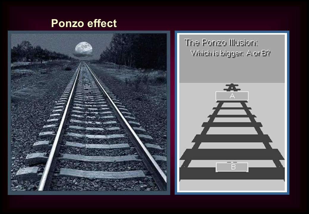 Ponzo effect Impossible to assess the magnitude of an object on the horizon.