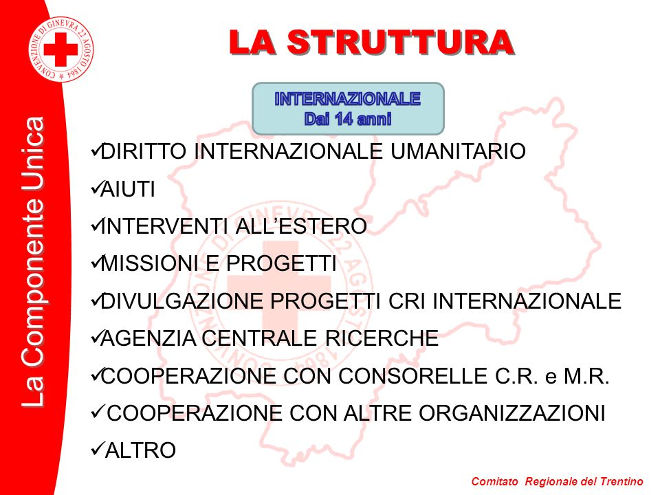 LA STRUTTURA DIRITTO INTERNAZIONALE UMANITARIO AIUTI