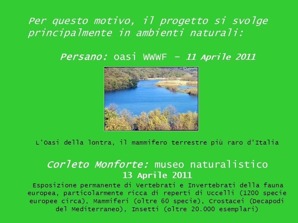 Persano: oasi WWWF – 11 Aprile 2011