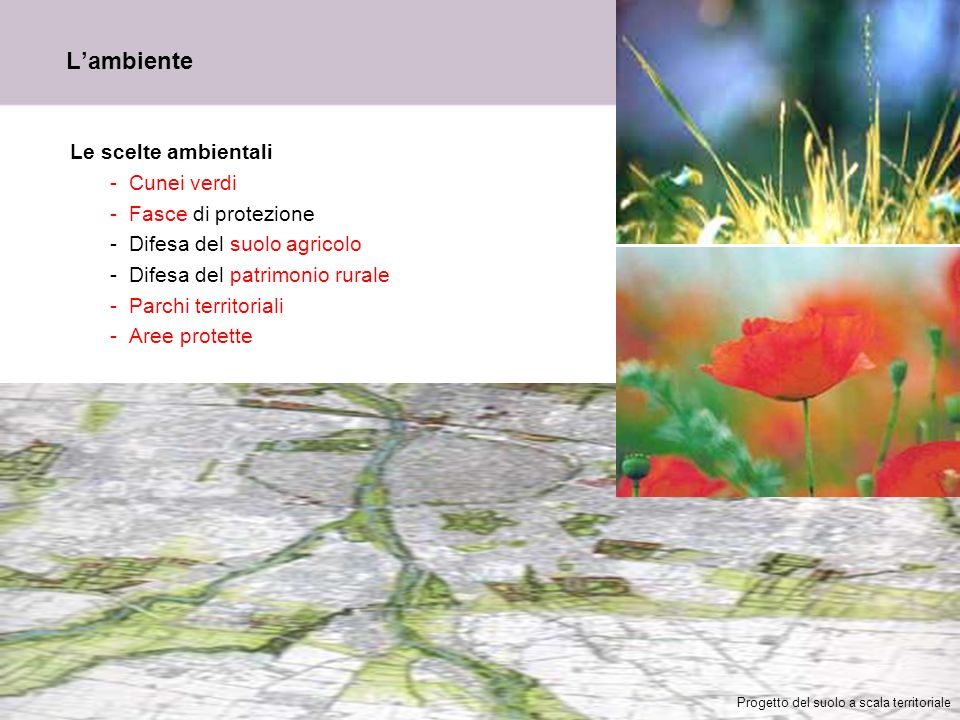 L'ambiente Le scelte ambientali Cunei verdi Fasce di protezione