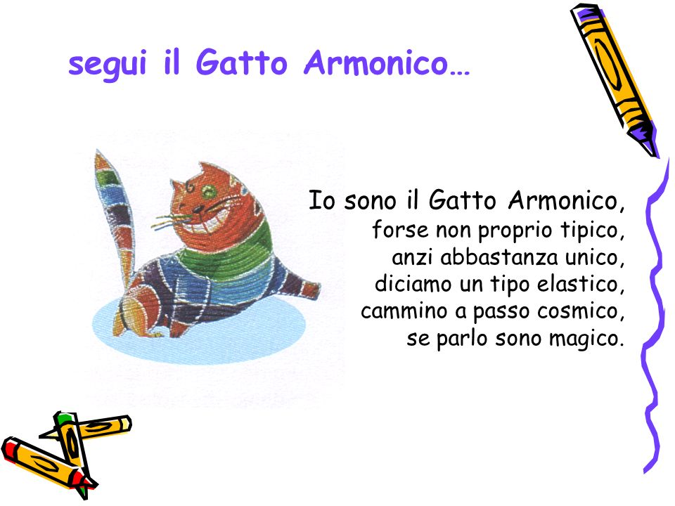 segui il Gatto Armonico…