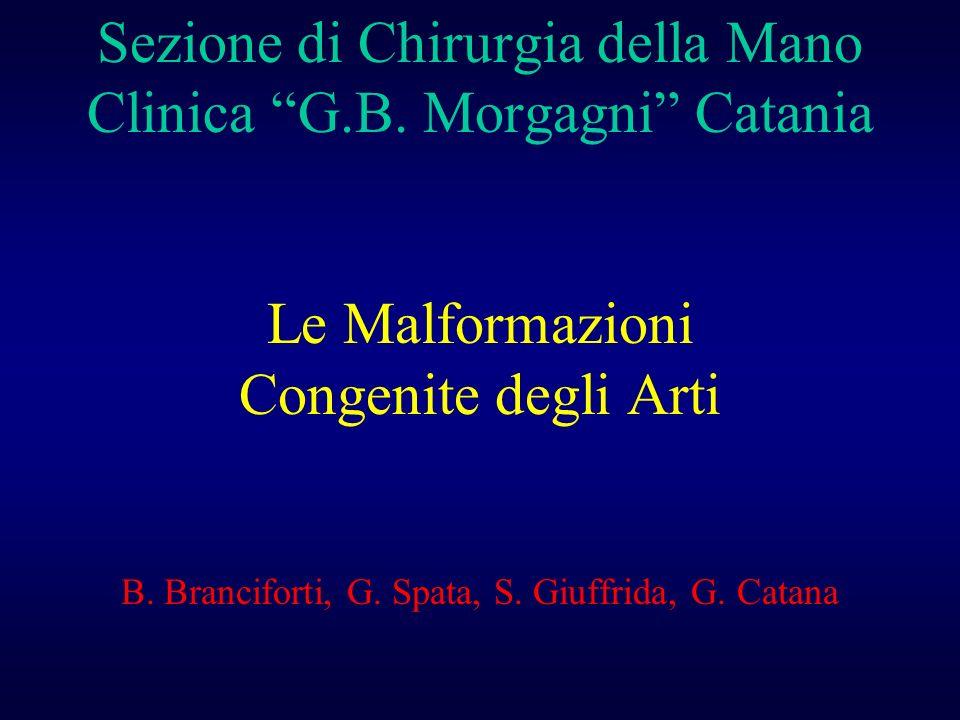 Sezione di Chirurgia della Mano Clinica G. B