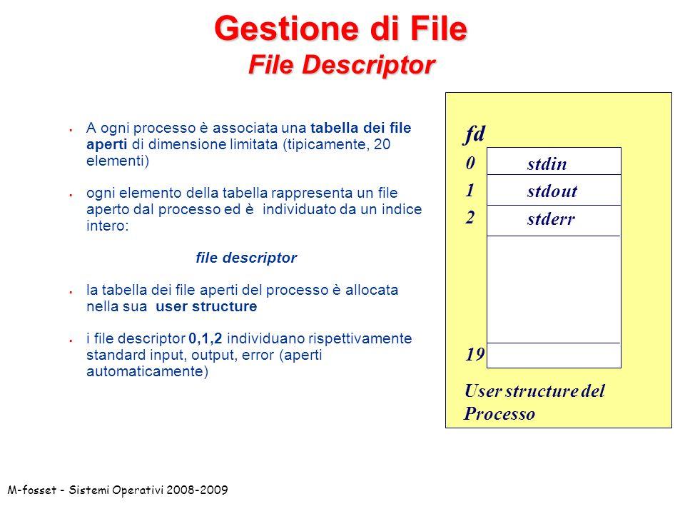 Gestione di File File Descriptor