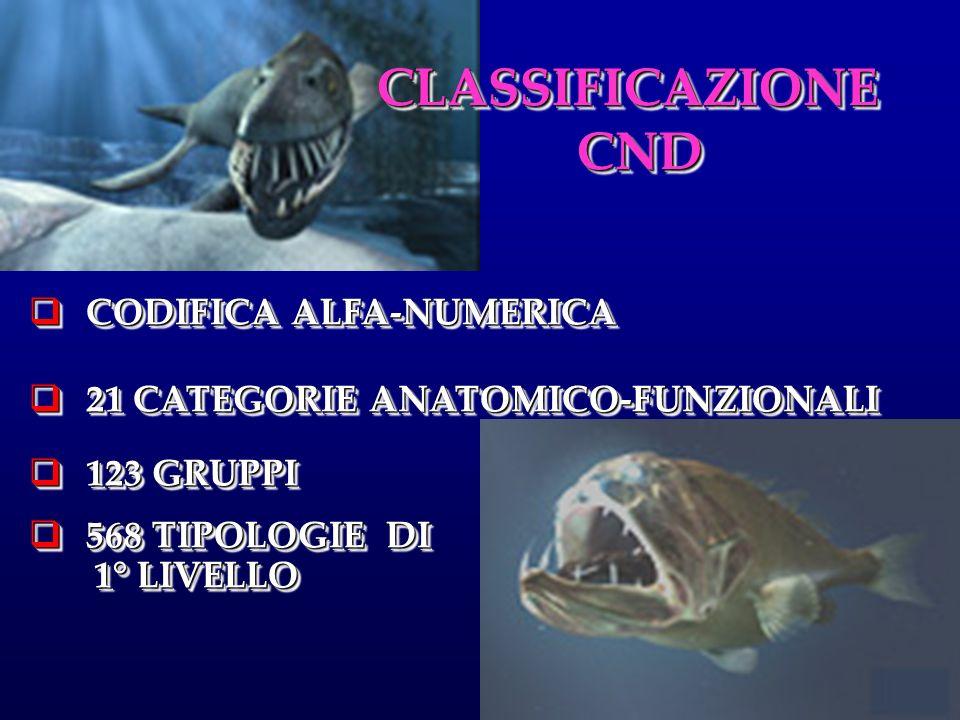 CLASSIFICAZIONE CND CODIFICA ALFA-NUMERICA
