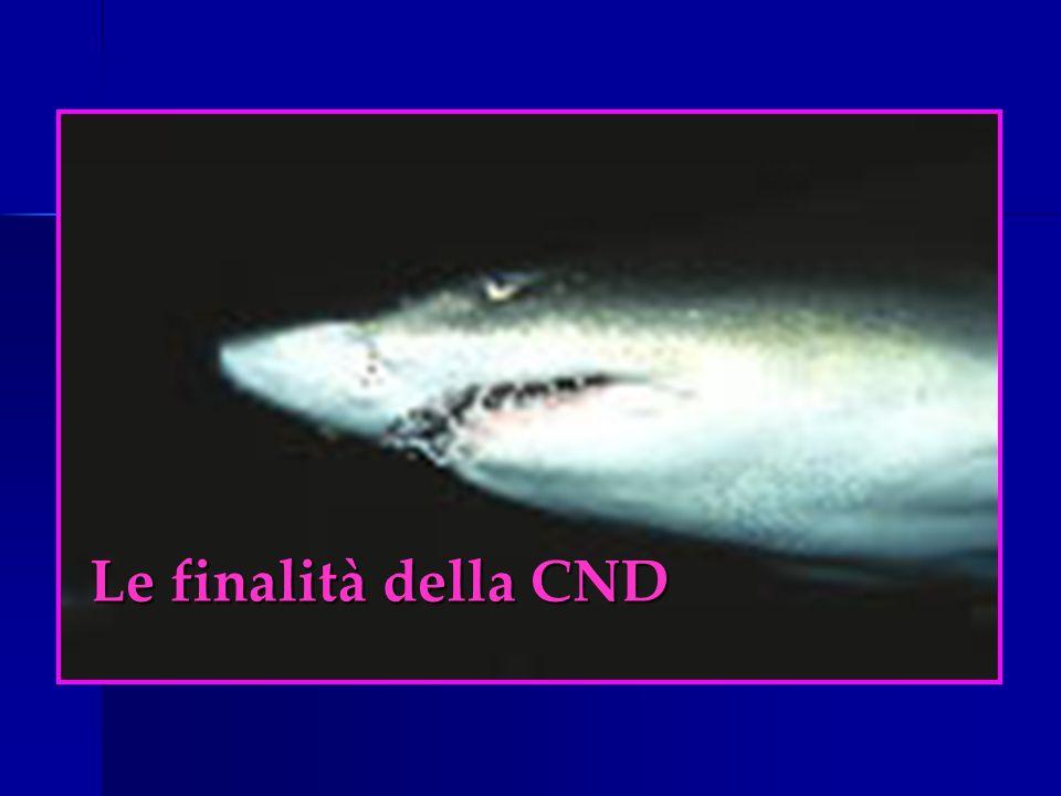 Le finalità della CND