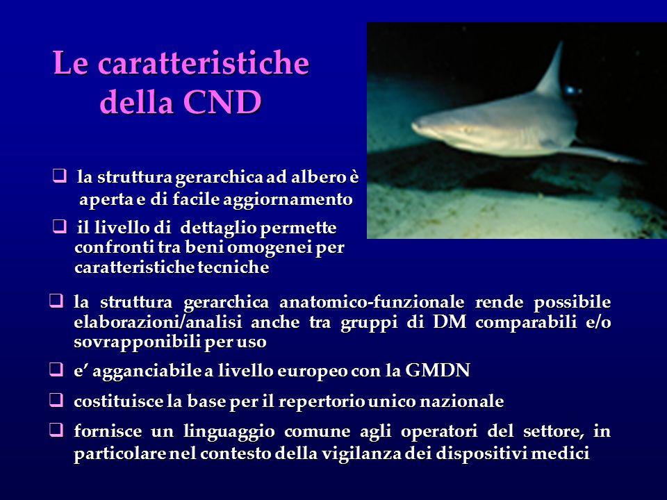 Le caratteristiche della CND