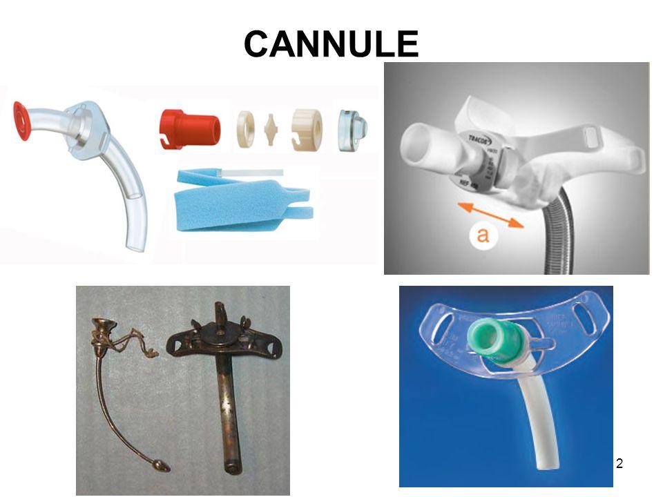 CANNULE