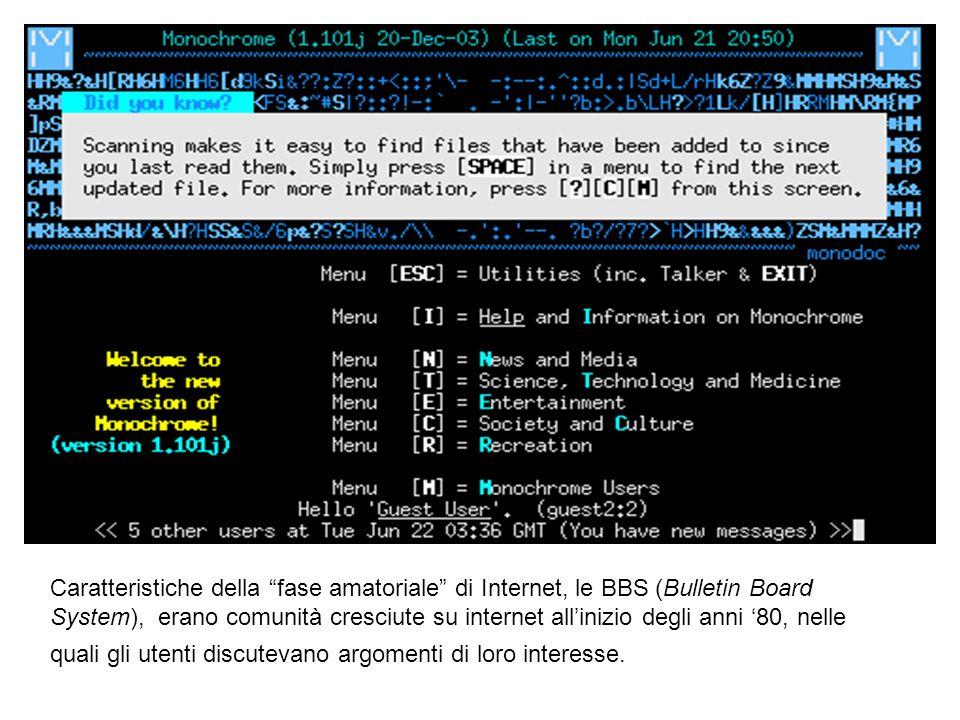 Caratteristiche della fase amatoriale di Internet, le BBS (Bulletin Board System), erano comunità cresciute su internet all'inizio degli anni '80, nelle quali gli utenti discutevano argomenti di loro interesse.